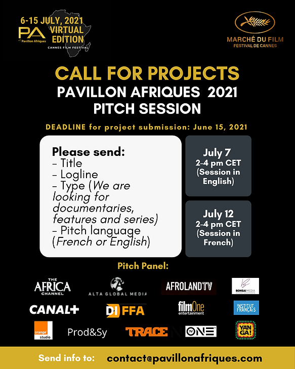 call for projects - pitch session - pa 2