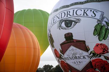 Henrick's Gin B-105