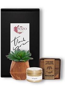 Succulent, Candle & Ceramic Mug_Category