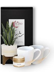 Ceramic Mugs Plant & Candle_Category_Web