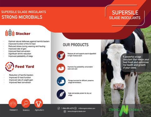 SuperSile Brochure #2