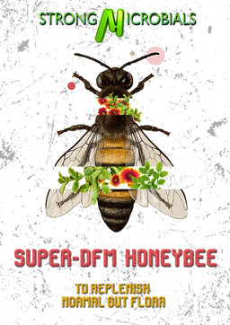 SuperDFM Poster #1