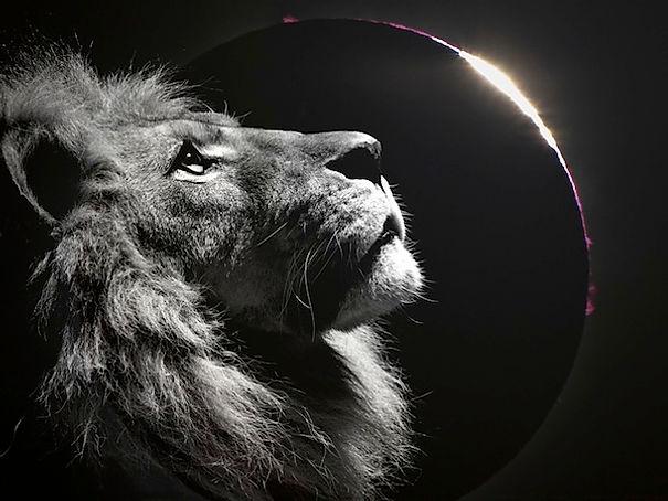 144k Lunar Eclipse Mass Meditation – Fri 27th. Planetary Clearing Report + More 49cf06_bc065850797242179349c31f47e8c529~mv2