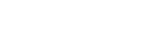 VisibleSky™_logo_(generic)_white.png