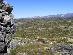 Nilsenuten Hardangervidda