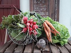 légumes_la_ferme_de_la_tindère.jpg