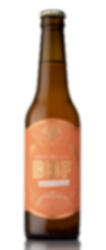 session IPA bouteille de bière artisanale craft beer Bordeaux Beer Factory Mosaic houblon
