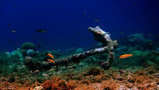 Submerged #1