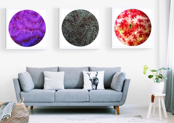 3תמונות מעל ספה.jpg
