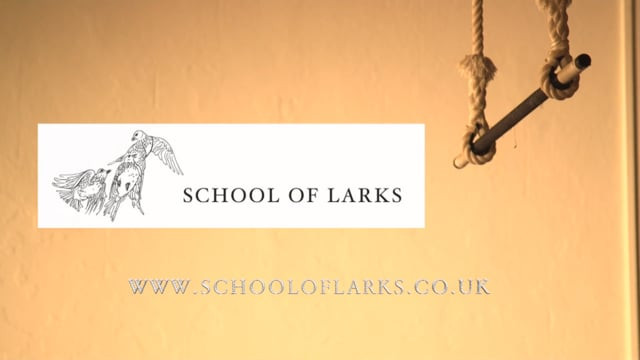 School of Larks