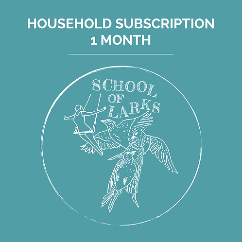 Household Subscription 1 Month