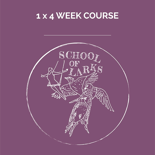 1 x 4 week course