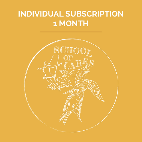 Individual Subscription 1 Month
