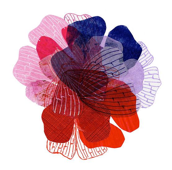 Petal Tricolor Print - Pink