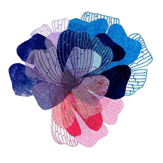 Petal  Tricolor Print -Blue