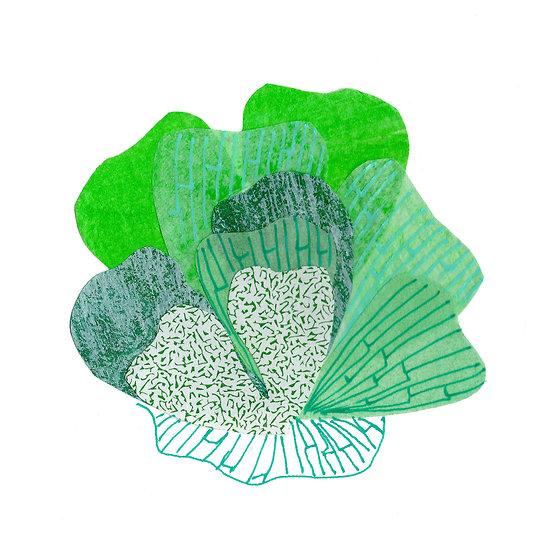Petal Print - Green