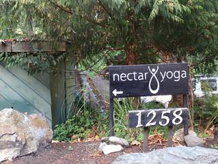 Nectar Yoga B&B on Bowen Island