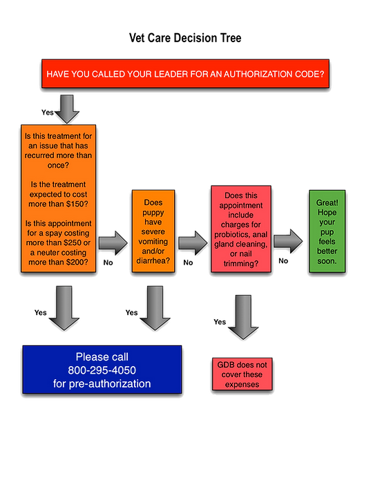Vet_Care_Decision_Tree_edited.png