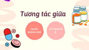 Tương tác xảy ra khi dùng Vitamin K2