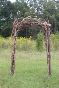 Rustic Vine Arch