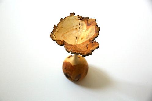 Birnbaumblume
