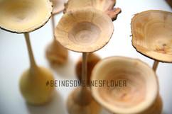 beingsomeonesflower.jpg