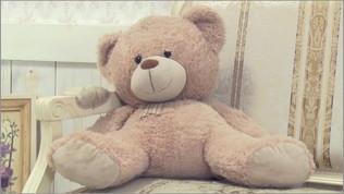 【映像コント】純真な少年に語りかけてきたのは「仲良しの熊のヌイグルミ」?!