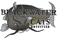 blackwatercats.png