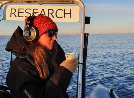 Urgent Need for Donations to Purchase an Amplifier for our Hydrophone!