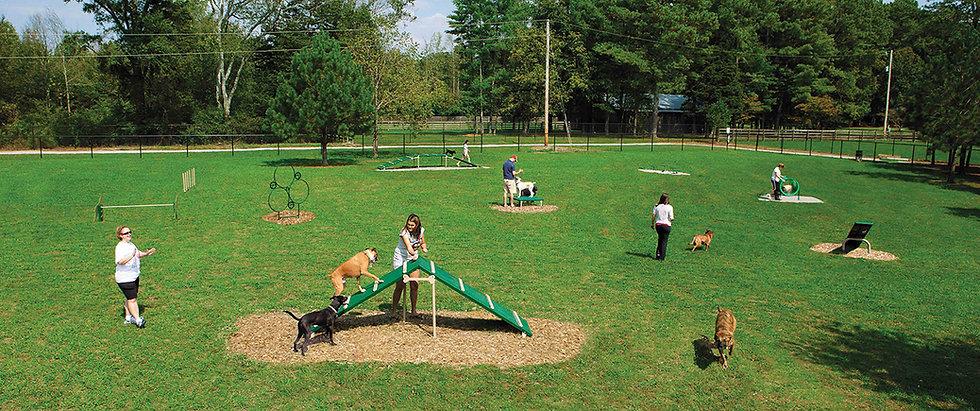 dog park equipment.jpg
