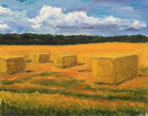 "Thinking through Haystacks (8x10"")"