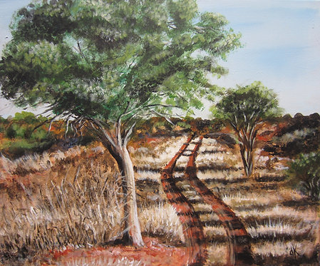 South African Trails (various sizes)