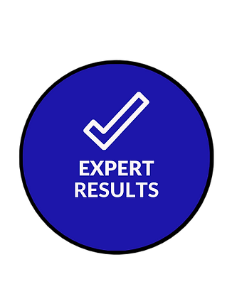 Expert Results.png