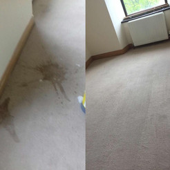 Carpet Before & After 2