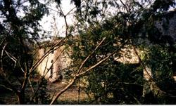 15-facade 7 nains