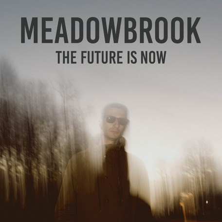 Meadowbrook Album Art Final.jpg