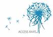 logo access bars.webp