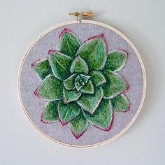 Megan Hammer Felted Succulent