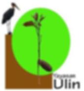 Yayasan-Ulin.jpg