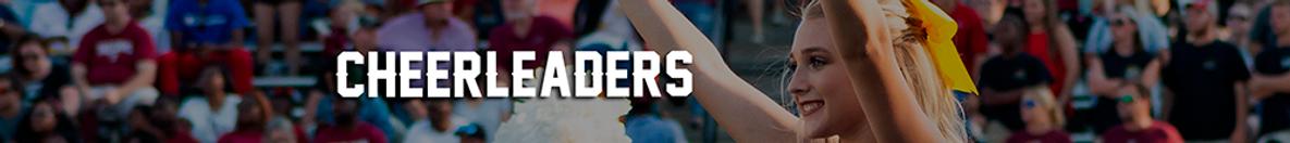 Banner-SECCIONES-Wix-CHEERLEADERS.png