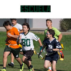 SECCIONS-WEB-1x1-ESCUELA.png