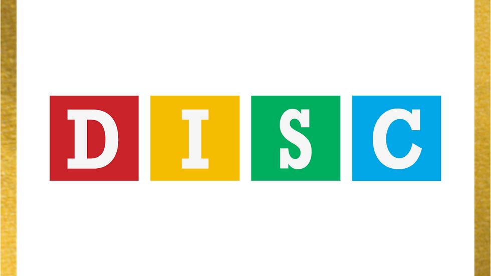 DISC profile & 1-2-1 session