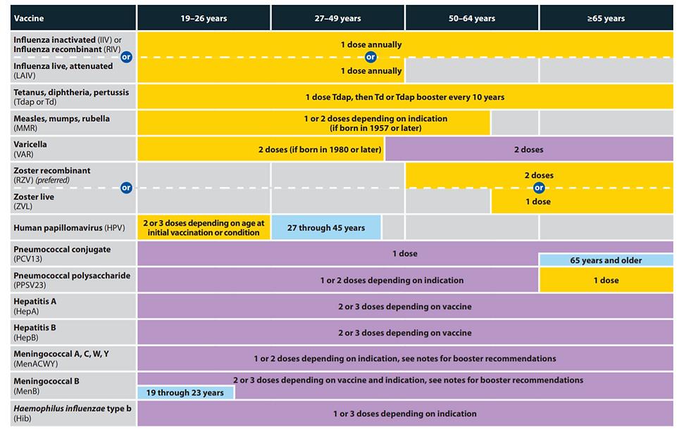 Adult Vaccine Timeline.png