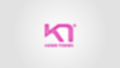 KariTraa_slides_forside-11.png