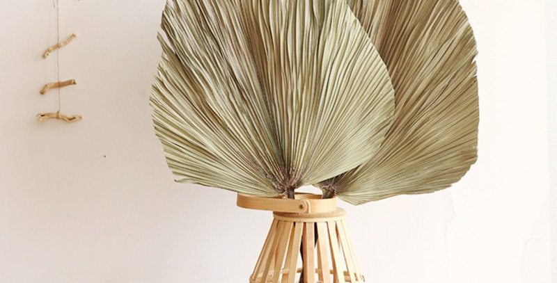 Giant Palm