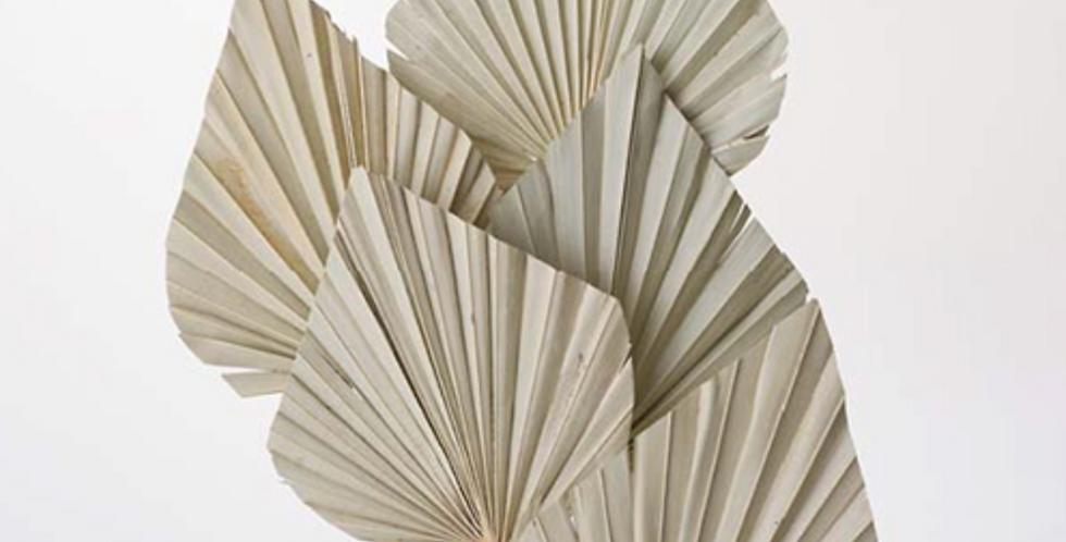 Dried Palm Spear