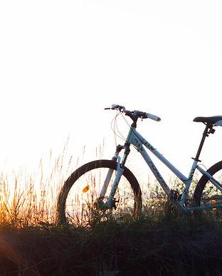 Bicycle 2.jpeg