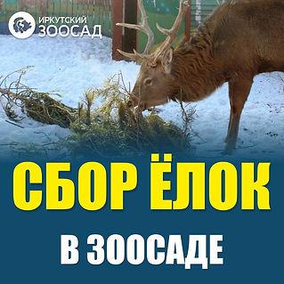 oD_D3Rg2opA.jpg