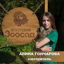Гончарова,.png