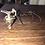 Thumbnail: Vintage silver pitcher jug on chain